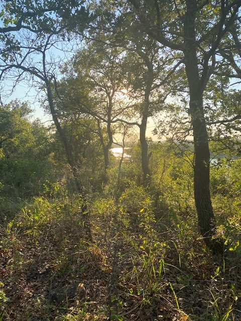 amazing camping at Lake mineral wells State Park